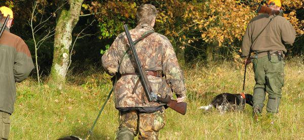 Jagt sensommer_aug2007.jpg