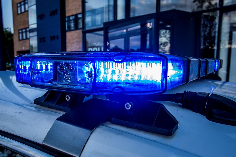 Frit lejde til at aflevere ulovlige våben i hele juni - Danmarks Jægerforbund